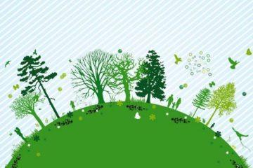 ecologia-del-piano-elettrico-A+++