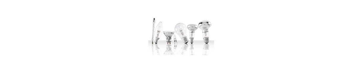 Lampade a Led risparmio energentico e alogena