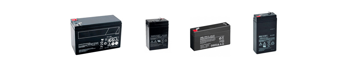 Rechargeable Lead Battery