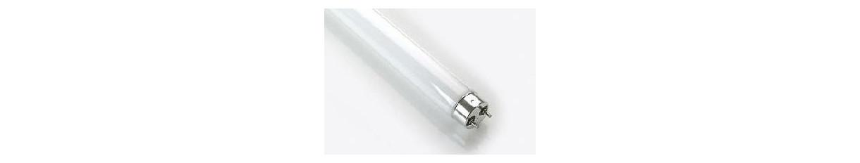 Fluorescenti T4-T5